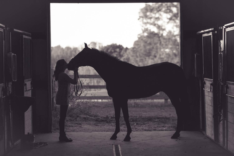 Jak komfort konia wpływa na jakość naszej jazdy?
