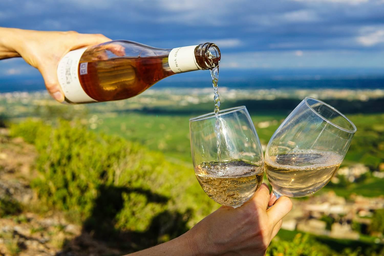 Jakie wino do krewetek?